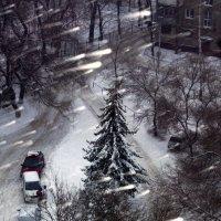 Зимушка зима :: Михаил