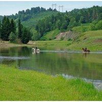 Река Чумыш :: Валерий Воронцов
