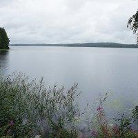 Озеро Юоярви :: Елена Павлова (Смолова)