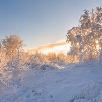 Морозный рассвет. :: Андрей Олонцев