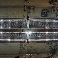 Вантовый Мост. Санкт-Петербург. :: Николай Т