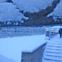 Снежно :: Елена