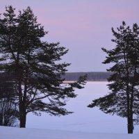 Зима в Осташкове :: Светлана Ларионова