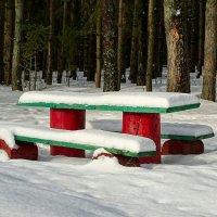 Столик на опушке(лесной интерьер) :: Милешкин Владимир Алексеевич