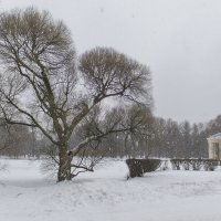 зимний пейзаж :: Людмила Волдыкова