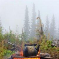 Утренний чай в лесу :: Сергей Чиняев
