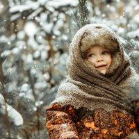 Зимушка-зима :: Olga Schejko