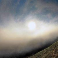 весенний туман клубился над горою :: viton