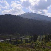 Дорога в нервану :: Дмитрий Самарин