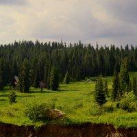 Гармония :: Дмитрий Самарин