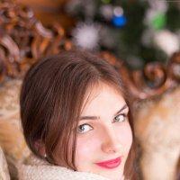 Новогоднее тепло) :: Энвер Крымский