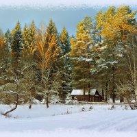 Зимний вечер :: Алла Кочергина