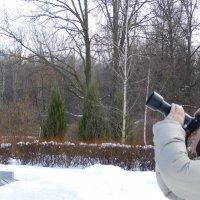 Фотограф и зима ) :: Марина Буренкова