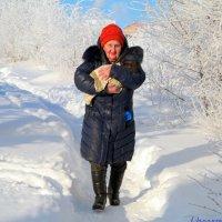 Маленьким собачкам холодно зимой.. :: Андрей Заломленков
