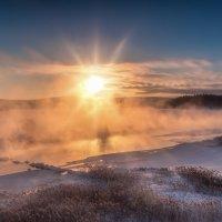Холодное утро :: vladimir