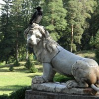 Я круче льва. :: Алексей Цветков