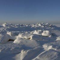 Северодвинск. У Белого моря (4) :: Владимир Шибинский
