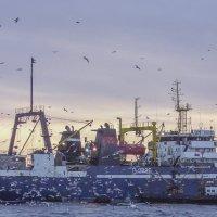 Закат солнца в море :: Михаил Измайлов