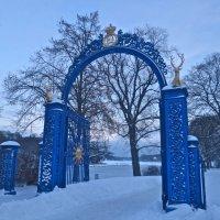 Голубые Ворота :: Елена