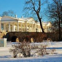В лучах зимнего солнца... :: Sergey Gordoff