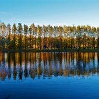 Зеркало отражений вечернего пруда... :: Sergey Gordoff