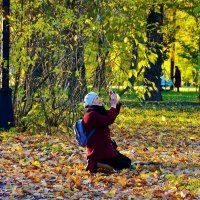 На коленях за прекрасным... :: Sergey Gordoff