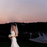 Невесты всегда красивы... :: Mitya Galiano