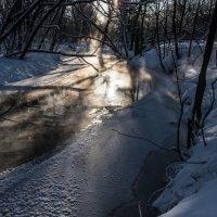 Почти замерзла... :: Владимир Безбородов