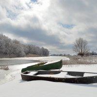 зима на Астраханских реках :: Алена Рыжова