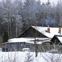 домик у леса :: оксана