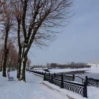 Парк,скамейка,белый снег-знать зима вершит свой бег... :: Paparazzi