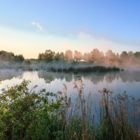 утром на болоте :: Василий И Иваненко