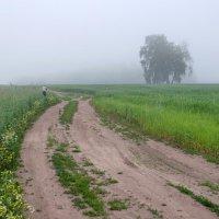 В открытом поле :: Сергей Тарабара