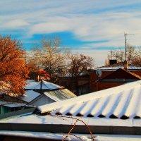 Морозное утро :: Юрий Гайворонский