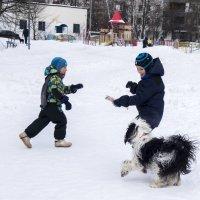 Бия играет с мальчиками :: Лариса Батурова