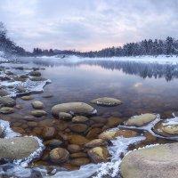 Зимняя Лебедь :: Егор Балясов