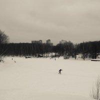 Летом лодки, зимой лыжи. :: Сергей Федоткин