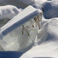 кубики льда :: Анна