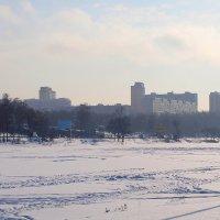 Впереди Москва... :: анна нестерова