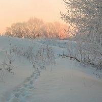 Утром на Листвянке 2 :: Юрий Морозов