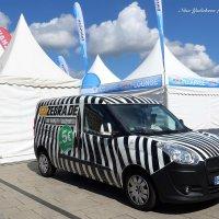 Про зебру на колёсах :: Nina Yudicheva