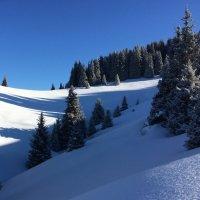 Снежные барханы. :: Anna Gornostayeva