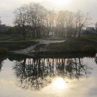 Закат над прудом :: татьяна