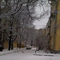 Зимний Дворик :: Svetlana Lyaxovich