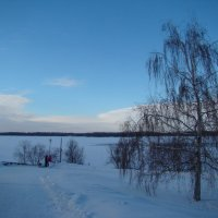 Морозным днем... :: марина ковшова