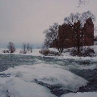 Старая мельница :: Александра