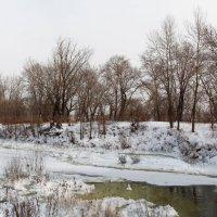 Холодный январь :: Dr. Olver  ( ОлегЪ )