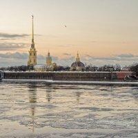 На берегу зимы :: Андрей Игоревич