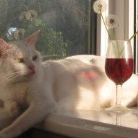 Искушение вином из одуванчиков... :: Алекс Аро Аро