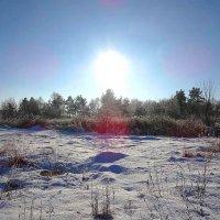 Мороз и солнце... :: Маргарита Батырева